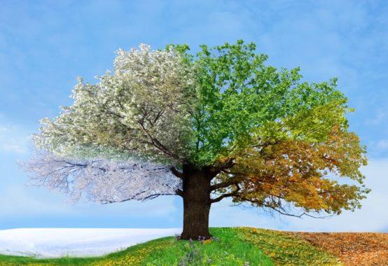 人生の春夏秋冬理論ベーシック講座